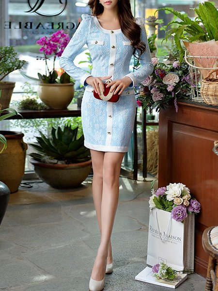 Sky Blue Floral Sheath Long Sleeve Polyester Mini Dress