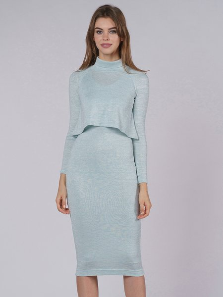 Jersey Plain Casual Long Sleeve Turtleneck Dress With Top