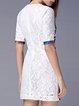 White Half Sleeve Crew Neck Sheath Mini Dress