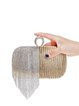 Fringed Clasp Lock Evening Mini Clutch