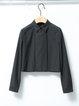 Black Shirt Collar Plain Simple Long Sleeve Cropped Top