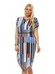 Printed Short Sleeve V Neck Shift Midi Dress
