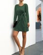 Sheath Date Casual Plain Mini Dress